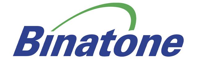 Ремонт Binatone