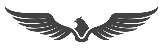 Ремонт Falcon
